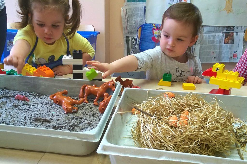 Dzieci dopasowują zwierzątka do ich siedlisk